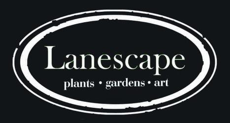 Lanescape