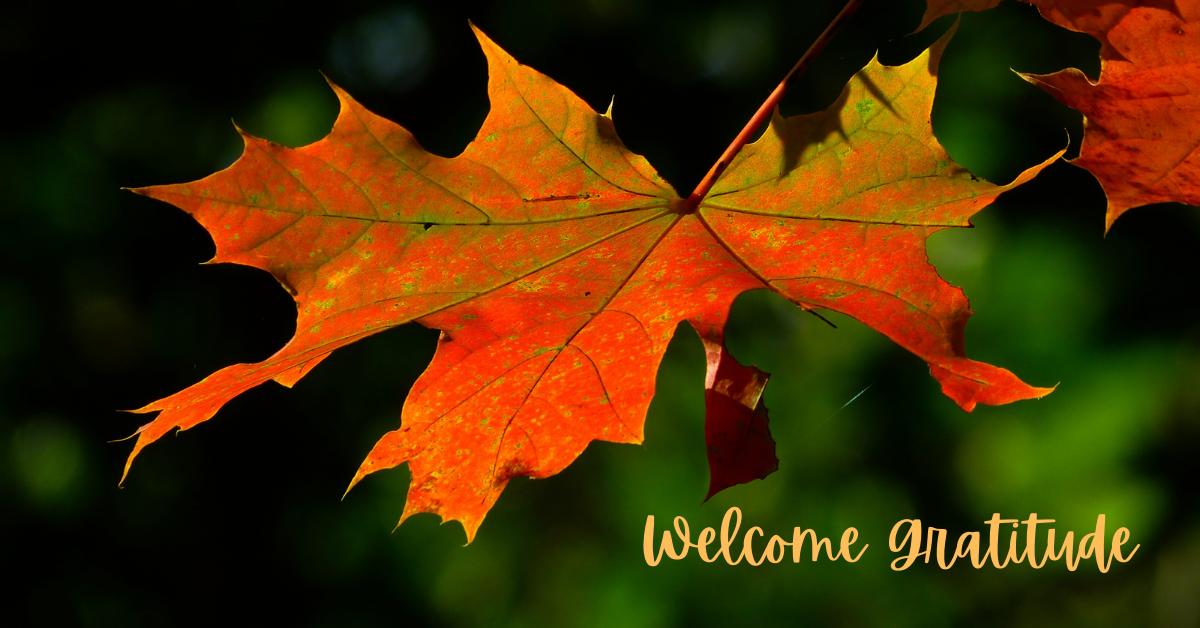 Welcome gratitude