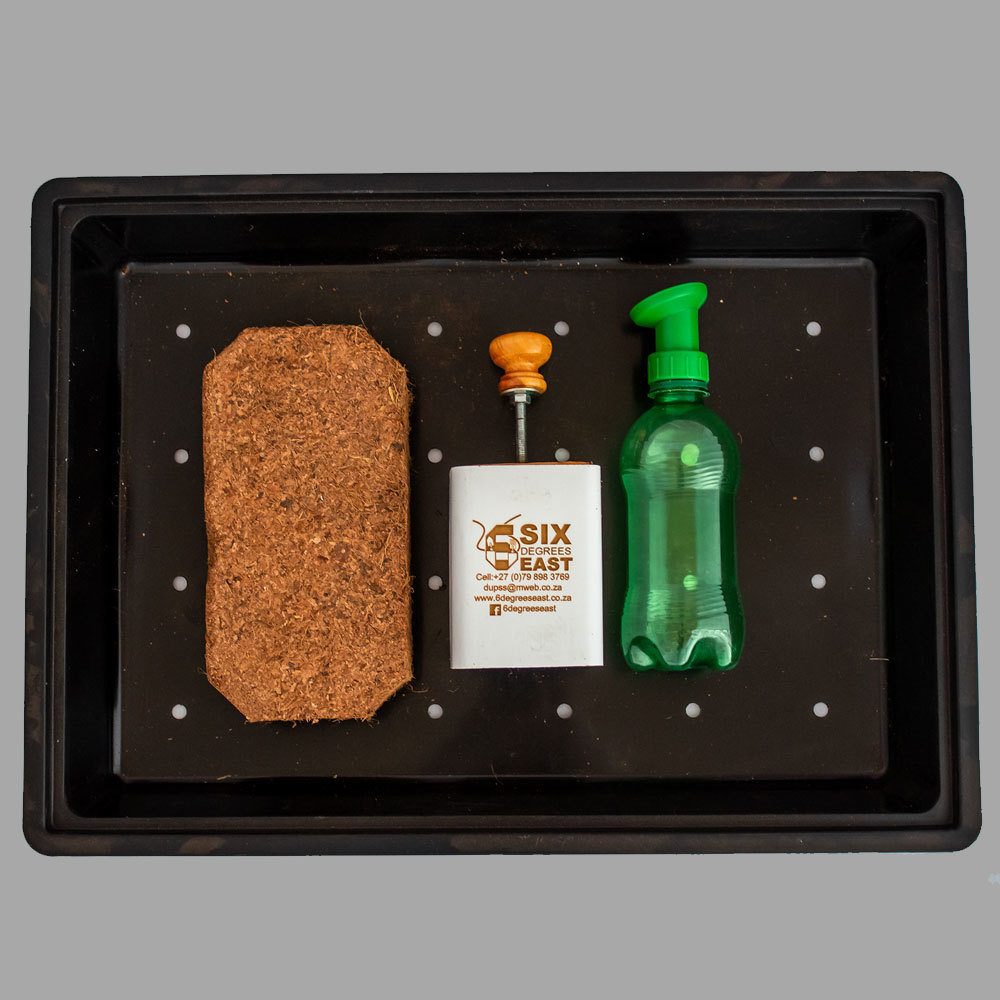Plunter Starter Kit: Nutrient-rich block for seed germination.