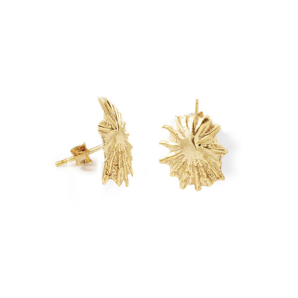 Star Limpet Shell Studs