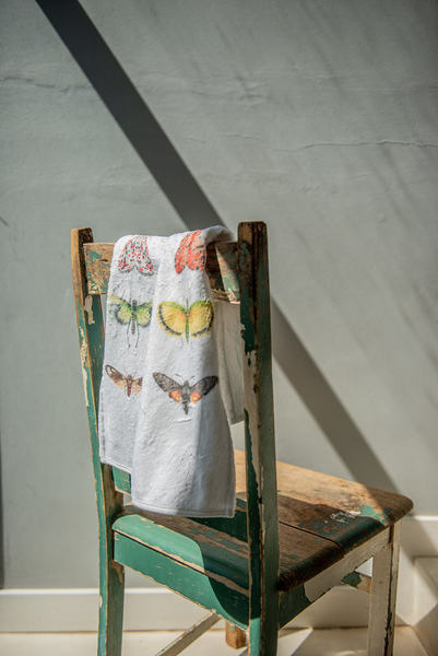 Winged Entomology Guest Towel