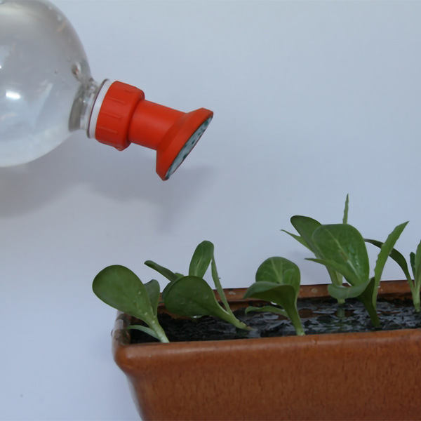 Watering Spout