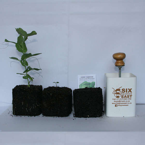 PLUNTER:  Nutrient-rich block for seed germination.